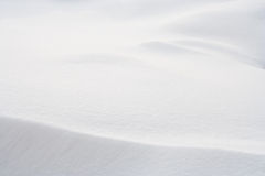 Free Snow Background Royalty Free Stock Photo - 16224605