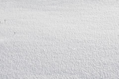Snow background. White empty real snow background Royalty Free Stock Image
