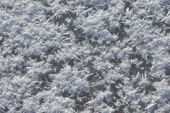 Snow background. Abstract snow winter Stock Image