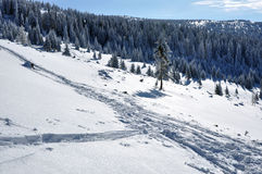 Snow background with ski tracks Royalty Free Stock Photos