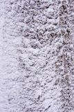 Snow background. royalty free stock image