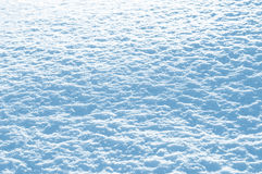 Snow background. Winter background from the bright glinting snow in the sun Stock Images