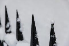 Snow Balance of Nature Stock Photography