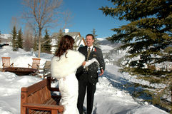 Snow Ball Fight. Bride and groom throwing snow at each other Stock Photos