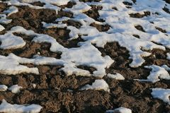Snow begins to melt at the end of the winter stock photo