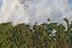 The snow begins to melt at the end of the winter, half snow, half grass royalty free stock image