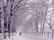 Snow in Beijing Royalty Free Stock Photo