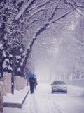 Snow in Beijing Royalty Free Stock Photos