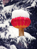 Snow in Beijing Royalty Free Stock Photos