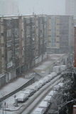Snow in Barcelona. The big snowfall in Catalunya in 2009 Royalty Free Stock Image