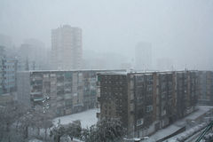 Snow in Barcelona. The big snowfall in Catalunya in 2009 Stock Photography