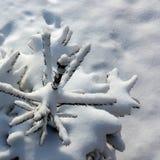 Snow blanket Royalty Free Stock Photo