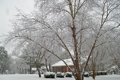 Snow blanket after winter storm in Charlotte Stock Photography