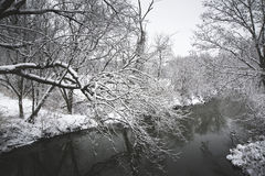 Snow on Country Creek. Snow blankets the Normans Kill area on West Old State Road in Guilderland, NY Royalty Free Stock Photography