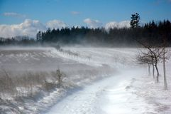 Snow blizzard 2 Royalty Free Stock Photography