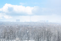 Snow blizzard over city and forest in spring Stock Photography
