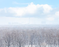 Snow blizzard over city and woods in spring Stock Photos