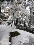 Snow blowers stock image