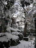 Snow blowers royalty free stock photos