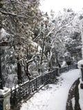 Snow blowers stock photo