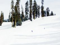 Snow Boarders in Yosemite National Park. Snow boarders start early at Badger pass in Yosemite Park stock image
