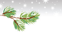 Snow border illustration. Illustration of a branch in snow for use as a border or background Stock Image