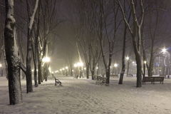 Snow on the boulevard in a winter cold night Royalty Free Stock Images