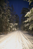 Snow-bound road in the forest at nigh Royalty Free Stock Photo