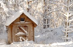 Snow bound wooden shack in a wooded setting Royalty Free Stock Images