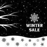 Snow branch winter sale. Winter sale falling snow tree branch big snowflake Stock Photography