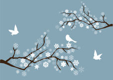 Snow branches. Illustration of snow branches with snowflakes and birds Stock Photography