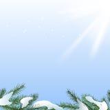 Snow branches Royalty Free Stock Photos