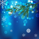 Snow branches. Vector winter background with beautiful various snowflakes and fir-tree branch Stock Photos