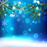 Snow branches. Vector winter background with beautiful various snowflakes and fir-tree branch Royalty Free Stock Photography