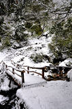 Snow Bridge Stock Photos