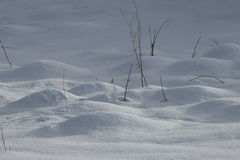 Snow bumps. In winter, Pyrenees in France stock photos