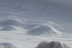 Snow bumps. In winter, Pyrenees in France stock image