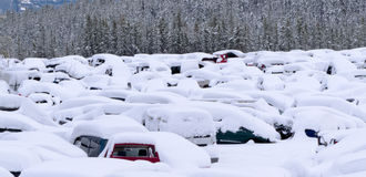 Snow buried cars after blizzard on car park. Extreme blizzard weather conditions bring heavy snow that buries hundreds of vehicles in car park or scrap junk yard Stock Image