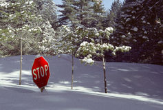 Snow-buried Stop Sign #2. Deep snow buries a Stop Sign, making it superfluous royalty free stock photos