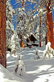 Snow cabin. Rustic mountain cabin surrounded by snow, trees royalty free stock images