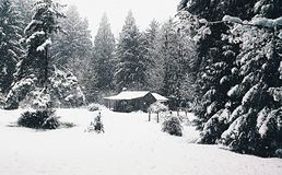 Snow cabin. Cabin in the snow Stock Photo
