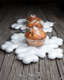 Snow Cake fotografia royalty free