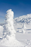 Snow Caked Trees Stock Photo