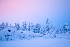 Snow Cannons on the Edge of the Winter Forest stock images