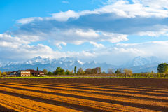 Snow-capped Alps Stock Image
