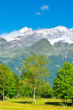 Snow-capped Alps. Landscape Park on the Foothills of Italian Alps Stock Photography