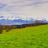 Snow-capped Alps. Meadow on the Background of Snow-capped Alps in Switzerland Stock Images