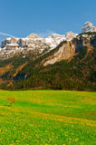 Snow-capped Alps Stock Photography