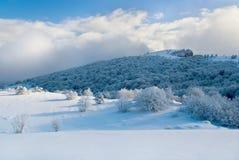Snow-capped berg Arkivbild
