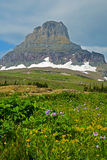 Snow-capped bergen en wildflowers Stock Foto